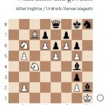 Mihai Neghina: The Confusion (Schach-Studie)